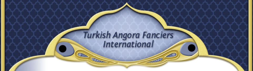 Turkish Angora Fanciers Internatinal